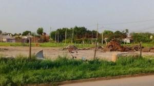 """Ocupas"" fueron desalojados tras intentar usurpar terrenos"