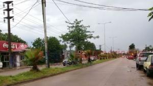 Fuertes vientos lluvias dejaron ramas y carteles caídos en Capital