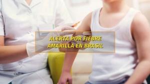 Actualizan las recomendaciones por la fiebre amarilla en Brasil