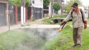 Dengue: 14 casos en Capital y casi 4 veces más que el año pasado
