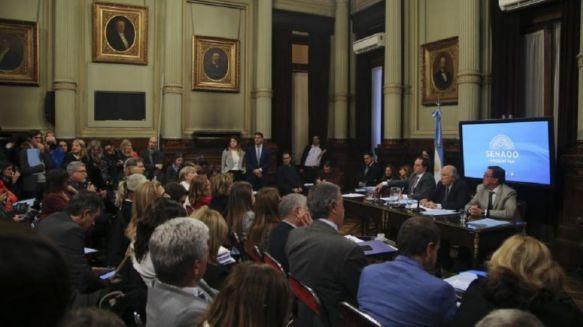Senado: Comienza el debate por la despenalización del aborto