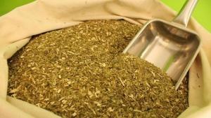 Sube un 20% el precio para productores de yerba mate